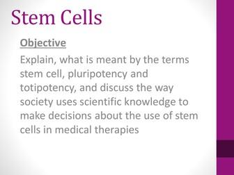 SNAB AS Biology Stem Cells