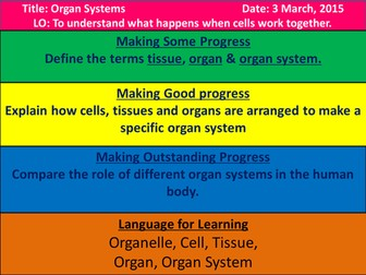 Levels of Organisation/Organ Systems