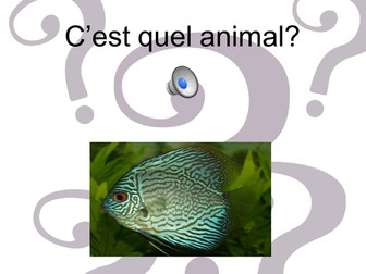 """easyMFL Year 4 French Unit 12 """"Carnaval des Animaux"""" SOL and Complete Resources"""