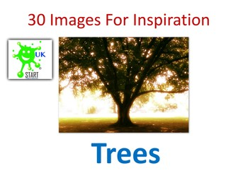 Visual Art Resource - 30 Images of Trees