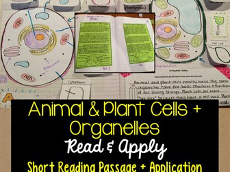 Animal & Plant Cells + Organelles Read and Apply Activity