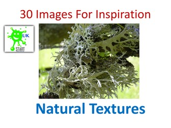 Visual Art Resource - 30 Images of Natural Textures