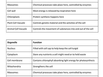 Organelle Function Card Sort By Logikblok Teaching Resources Tes