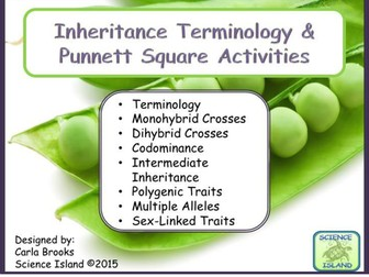 Inheritance Activities: Genetics Terminology and Punnett Squares