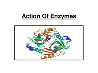 OCR AS Biology - Action Of Enzymes