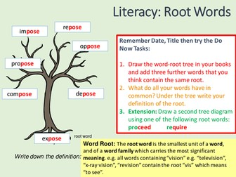 Word Roots Prefixes And Suffixes Teaching Resources