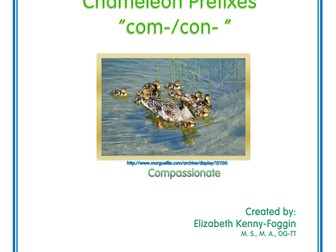 Know the Code: Chameleon Prefixes - com-  con- co-