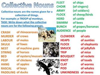 Grammar- Nouns- Types of Nouns- Yr 5/6