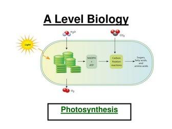 AQA A  Level Biology - Photosynthesis ppt & Workbook