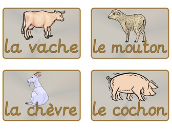 French Animal Vocabulary Cards