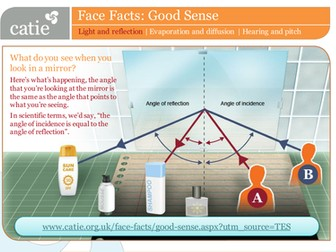 Good Sense – light and reflection web activity