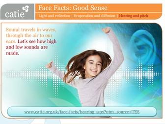 Good Sense – hearing and pitch web activity