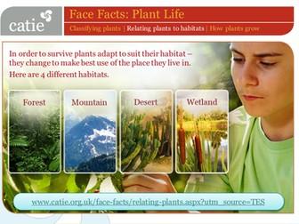 Plant Life – relating plants to habitats web activity