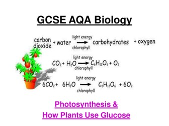 GCSE AQA Biology - Photosynthesis, rates of photosynthesis, graphs,uses of glucose ppt + 4 w/sheets
