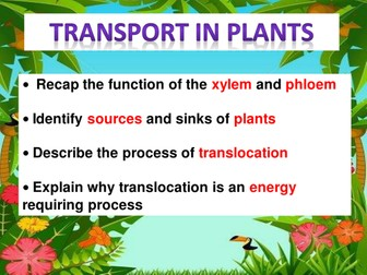 Transport in plants, including translocation