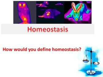 Homeostasis: Presentation with activities for GCSE Biology and A Level Biology.