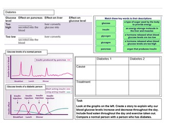 The Nervous System and Homeostasis for A Level (and high level GCSE) - BUNDLE OF 7 RESOURCES