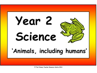 Year 2 Science Vocabulary Cards