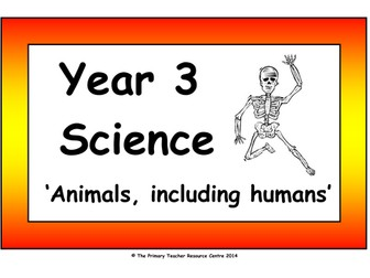 Year 3 Science Vocabulary Cards