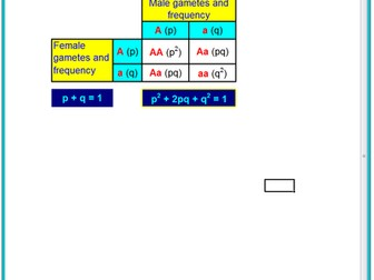 3.7.2 Population Genetics - Hardy Weinberg Spreadsheet