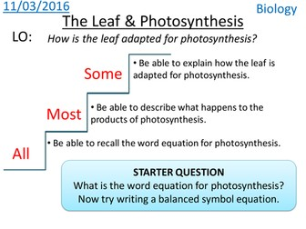 Leaf & Photosynthesis - NEW KS3