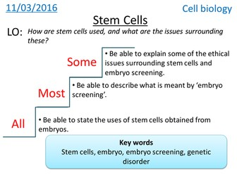 Stem cells - Cell Biology - NEW GCSE