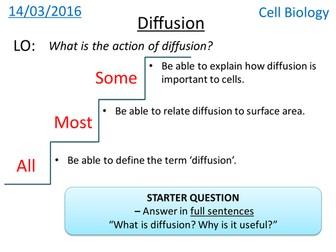 Diffusion - NEW GCSE