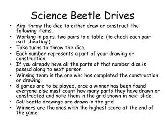 Science Beetle Drive games