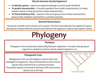 Biology AS Level OCR Revision Notes - Classification