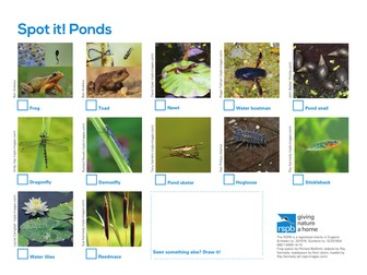 Spot It: Ponds