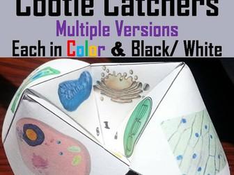 Cell Organelles Cootie Catchers