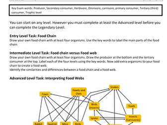 Graded Task sheet on Food Chains and Food Webs