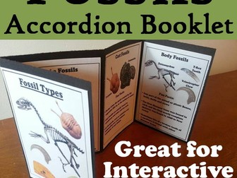 Fossils Accordion Booklet