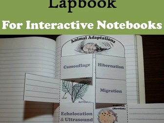 Animal Adaptations Lapbook