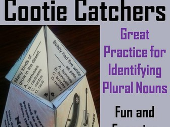 Plural Nouns Cootie Catchers