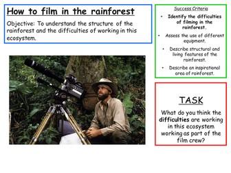 Filming in a Rainforest - Rainforest  Structure