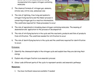 Nitrogen Cycle - independent learning task