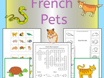 French Pets activities, worksheets and games