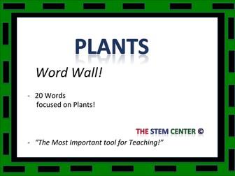 Plants: Word Wall