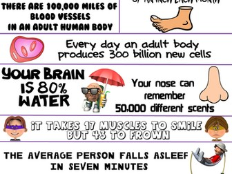 Health and Science Poster: Incredible Human Body Facts