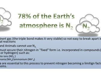 NITROGEN  CYCLES IN ECOSYSTEMS