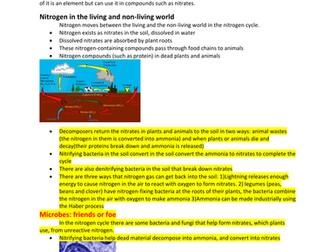 B2 The Nitrogen Cycle