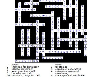 Cell Structure And Function Crossword Puzzle By Theteacherteam