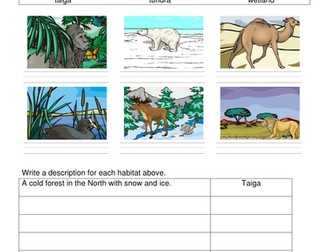 Habitat matching worksheets differentiated Year 2 Key Stage 1 Science