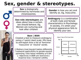 AQA Psychology - Gender Revision / Summary