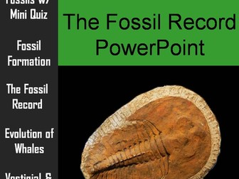 Fossil Record PowerPoint