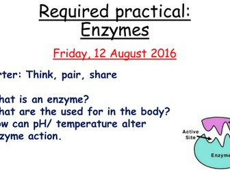 Enzymes required practical- New AQA GCSE Biology