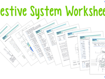 Digestive System Worksheet 6