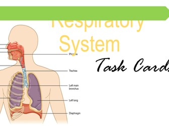 Human Body Systems Package