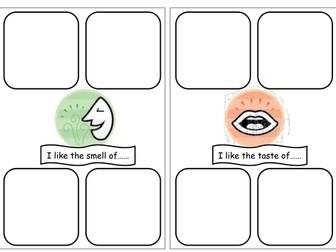 My 5 senses workbook